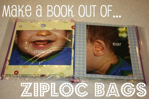 ziploc 500x333 Ziploc My Body Book