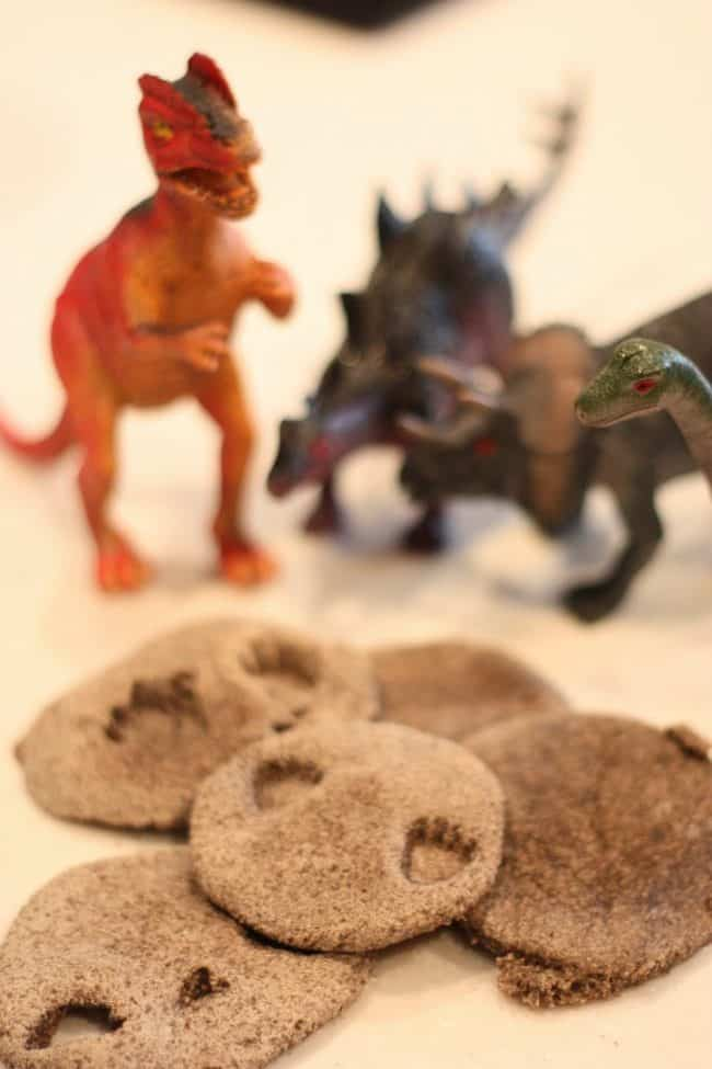 Dinosaur Fossils Craft