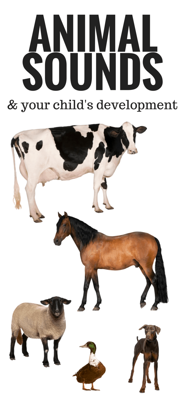 Animal Sounds and your childs development
