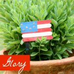 Old Glory Craft