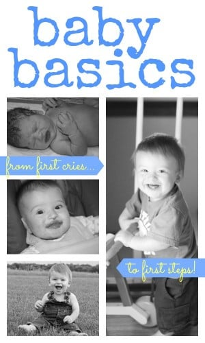 Baby Basics: Resources, Advice, and Activities for Babies 0-12 Months