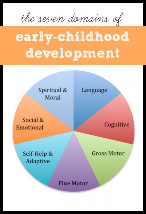 The Seven Domains of Early Childhood Development 500x735 Domains of Early Childhood Development