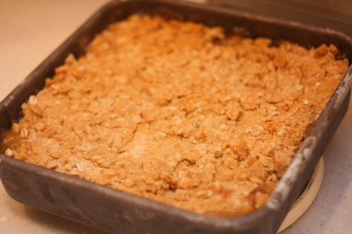 IMG 7573 500x333 Easy Apple Crisp (7 minute prep time)