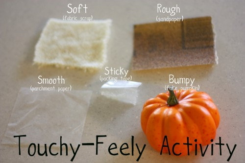 Touchy Feely 500x333 Toddler Time:  Touchy Feely Activity