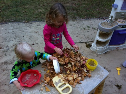 leaf play 500x373 Show and Share Saturday Link Up!