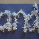 Snowy Sight Words