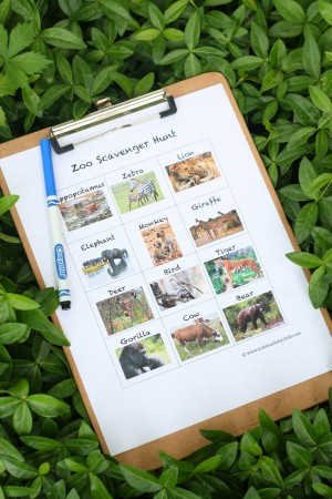 IMG 1960 300x450 Printable Zoo Scavenger Hunt
