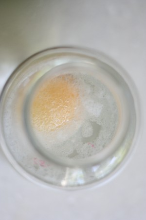 bouncy egg in vinegar