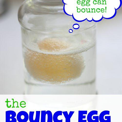 Bouncy Egg Experiment