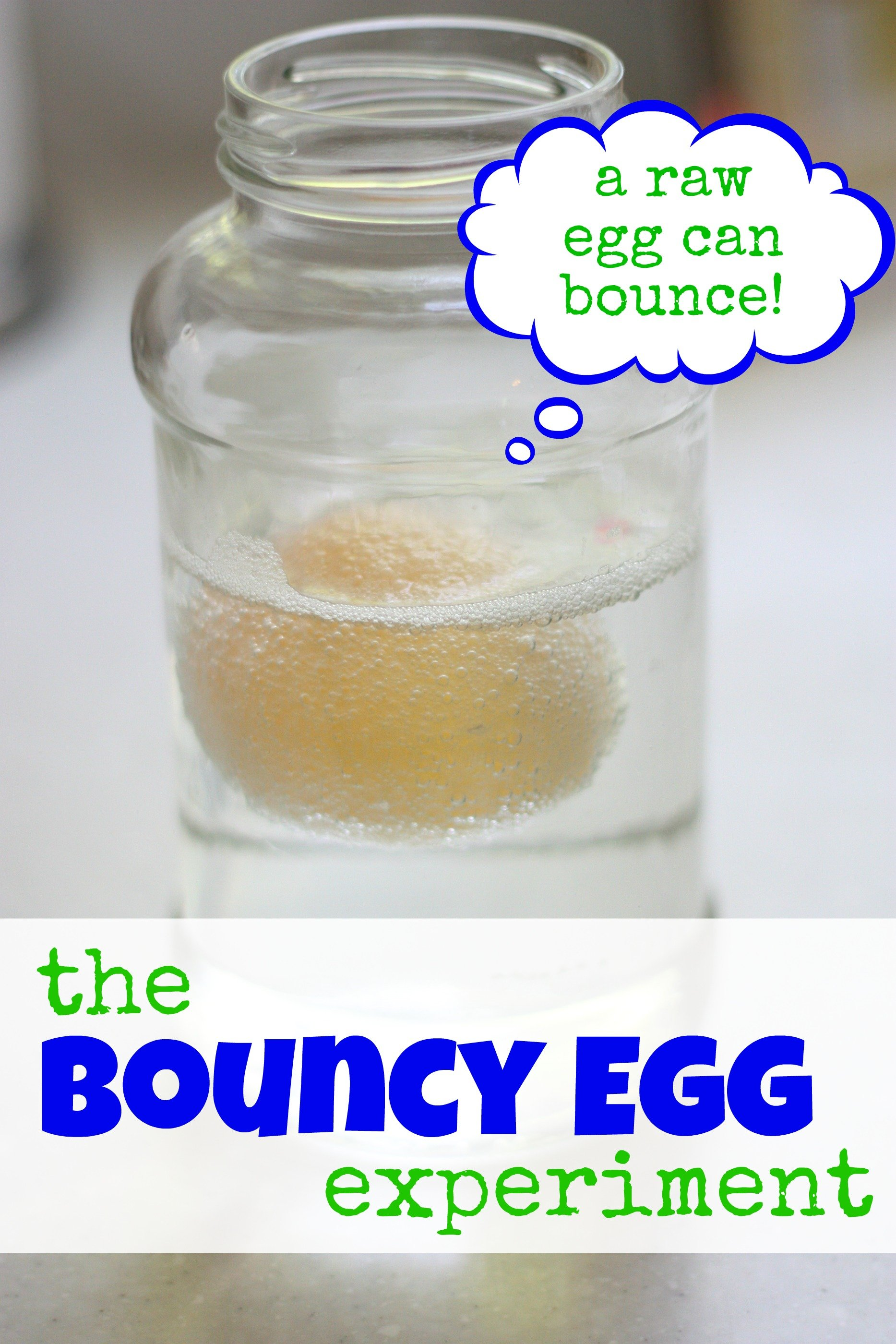 bouncey egg experiment Purpose the purpose of our experiment is to see which type and size of egg (that has been soaked in vinegar) will bounce higher materials 1 phone (1.