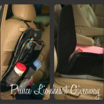 Prince Lionheart Travel Bundle:  Product Review & Giveaway