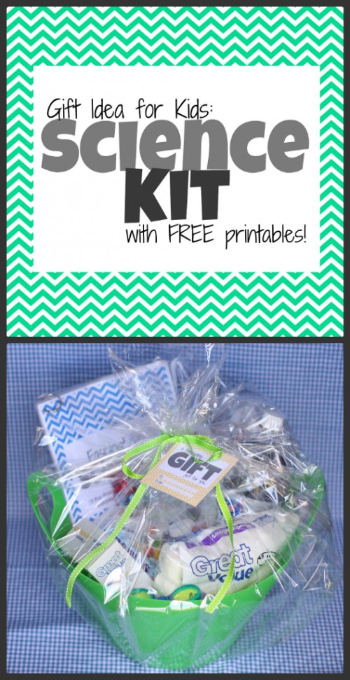 6ac6b3fea242 Gift Idea  Science Kit for Kids (with free printables) - I Can Teach ...