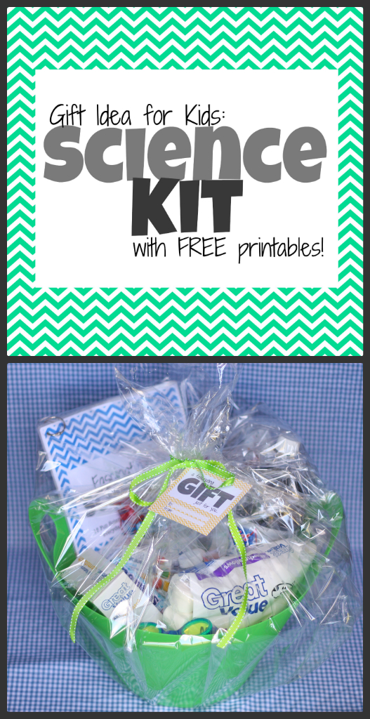 Gift Idea: Science Kit for Kids (with free printables) - I Can Teach ...