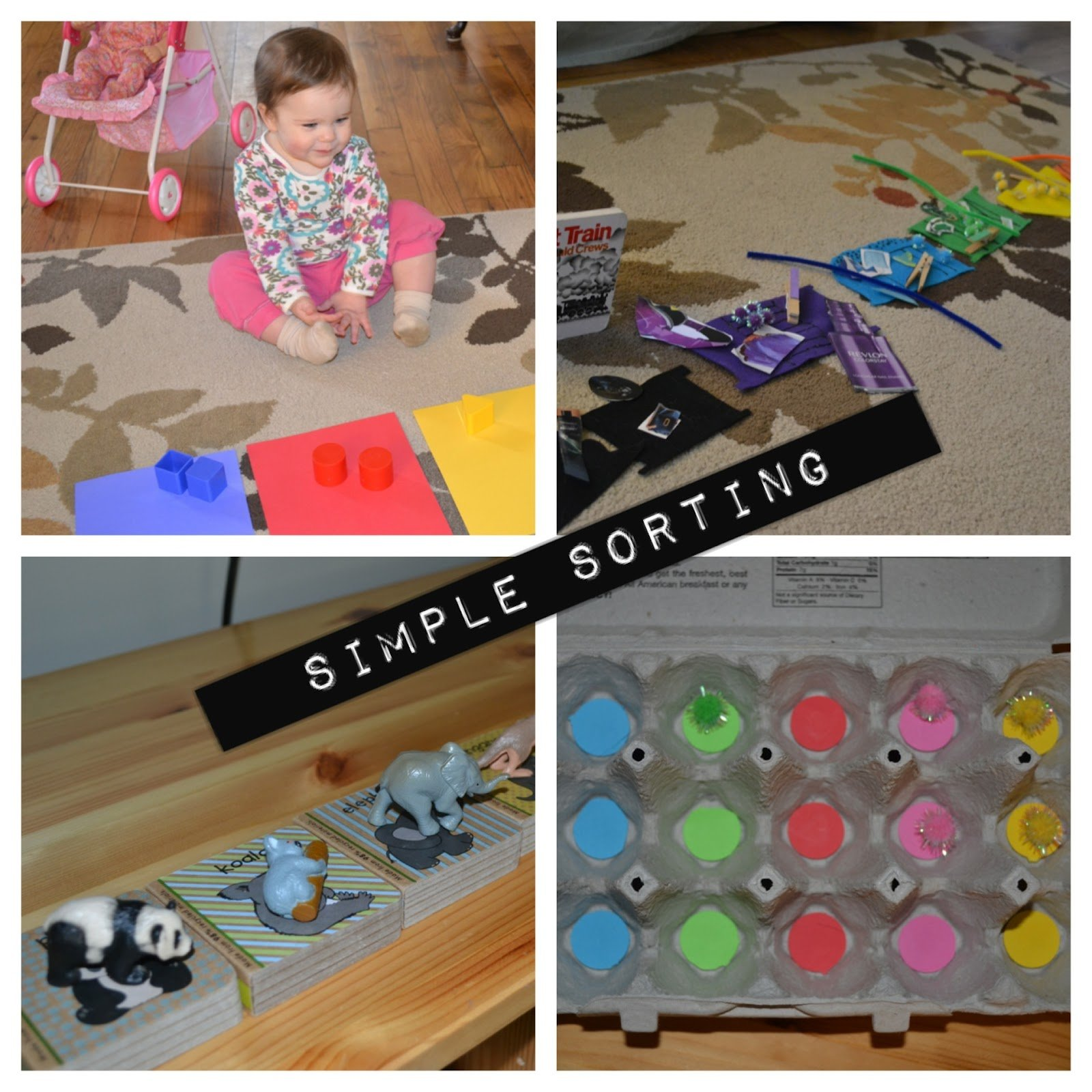 simple sorting for young toddlers i can teach my child
