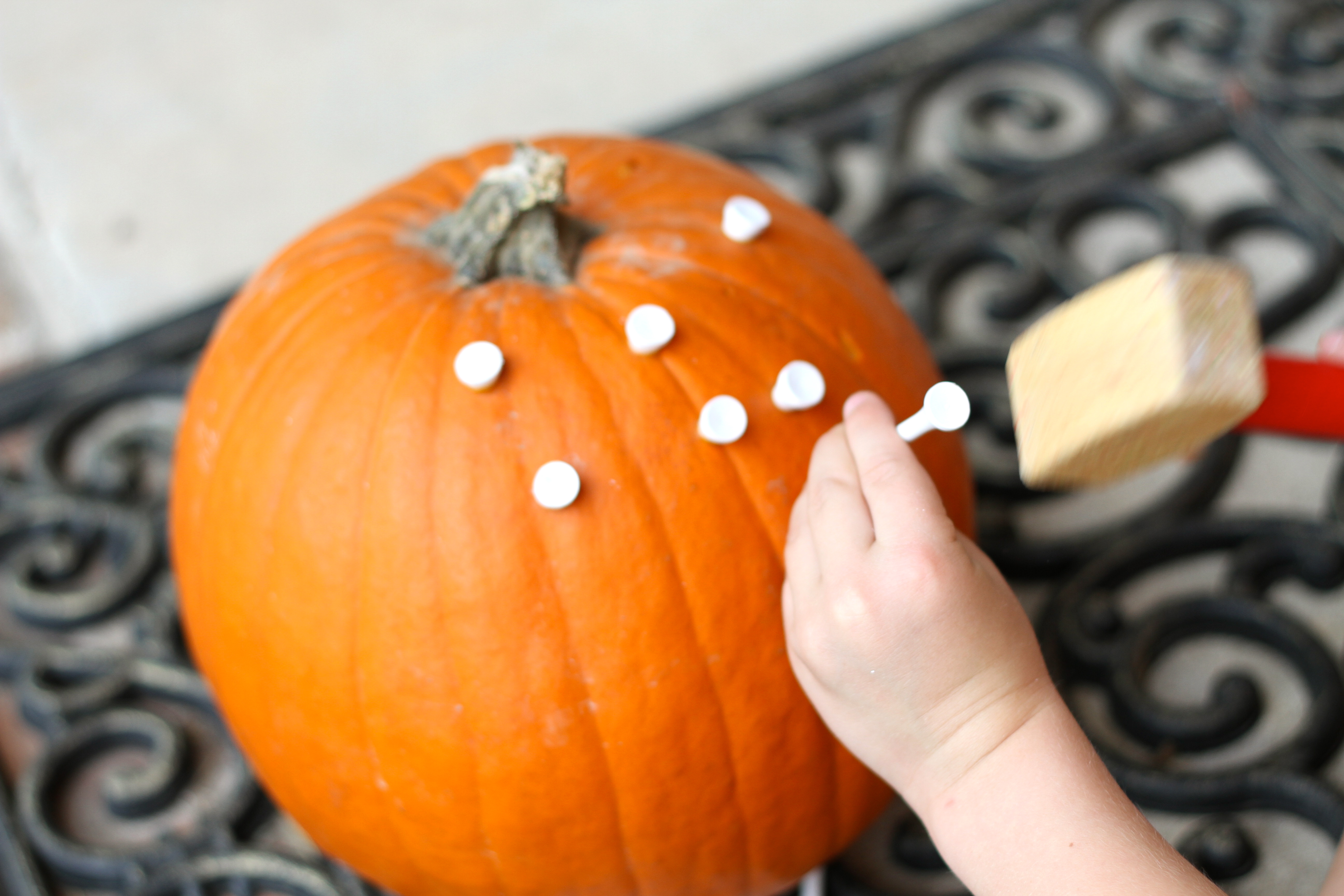 Uncategorized Pumpkin Golf pounding golf tees into a pumpkin img 5207