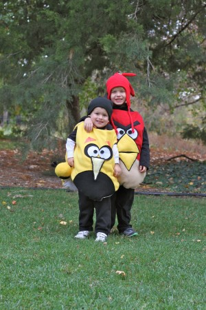 IMG 6130 300x450 DIY Angry Bird Costumes