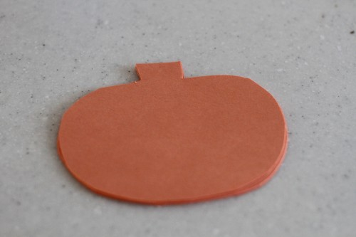 IMG 6217 500x333 Pumpkin Seed Puzzles