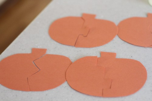 IMG 6220 500x333 Pumpkin Seed Puzzles
