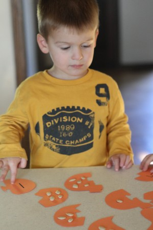 IMG 6227 300x450 Pumpkin Seed Puzzles