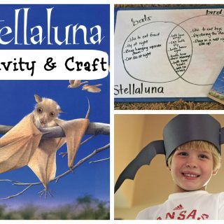 """Stellaluna"" Activity & Craft"