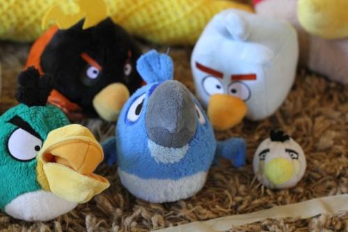 IMG 6263 500x333 Angry Bird Election