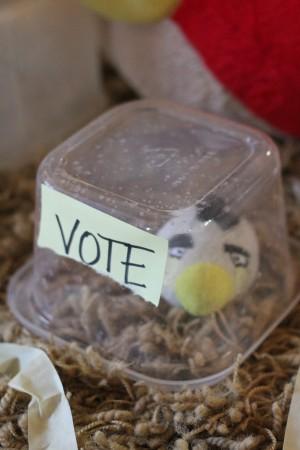 IMG 6273 300x450 Angry Bird Election