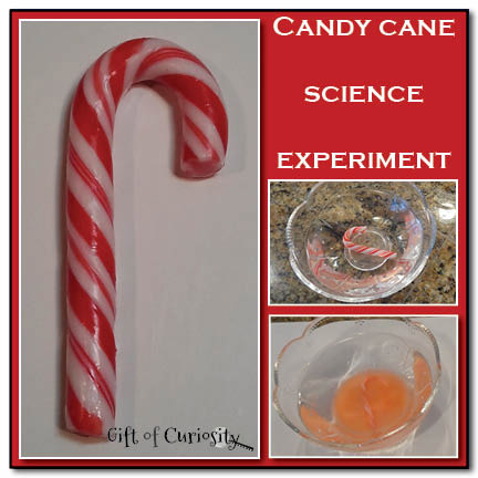 Candy Cane Science Experiment header Show and Share Saturday Link Up!