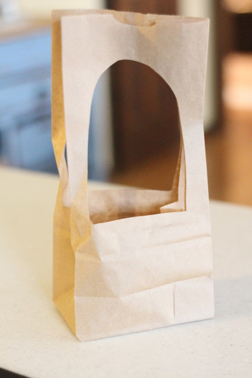 IMG 7260 500x750 Paper Bag Manger Craft