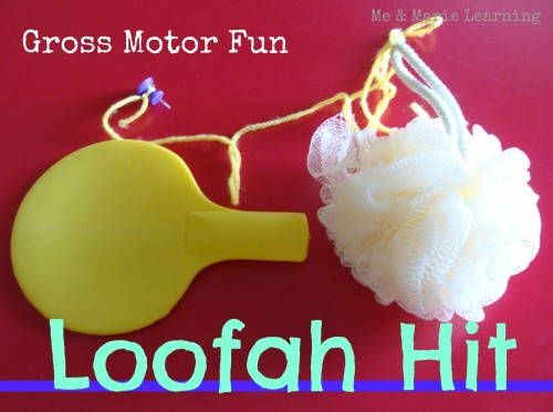 Loofah Hit 1 500x372 DIY Motor Activities