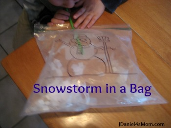 jdaniel4smom snowstorm bag title Show and Share Saturday Link Up!