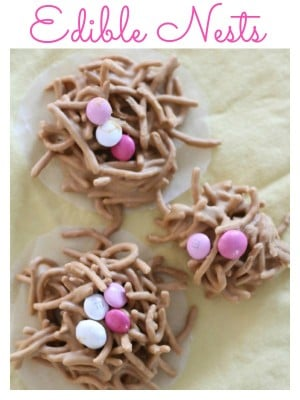 Edible Nests