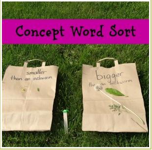 Concept Word Sort