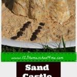 Sand Castle Snack