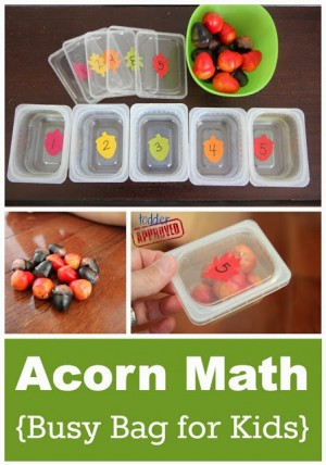 acorn math busy bag 300x428 Show and Share Saturday Link Up!