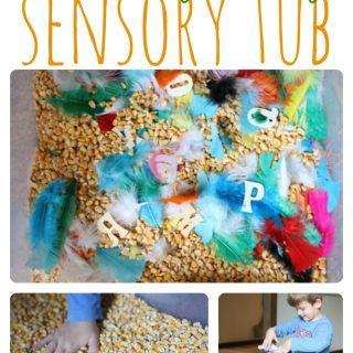 Thanksgiving Sensory Tub for Preschoolers