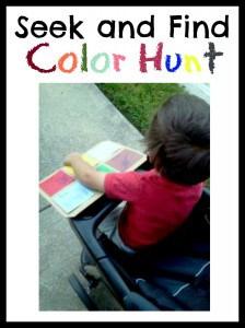 Seek and Find Color Hunt