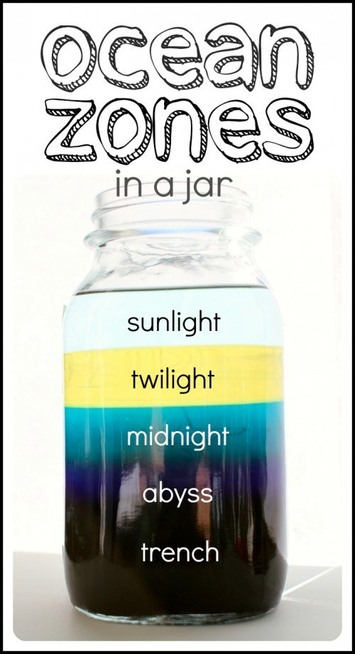Ocean Zones in a Jar