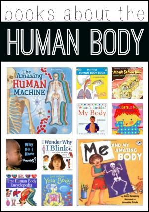 Books about the Human Body 300x425 Human Body Activities for Kids