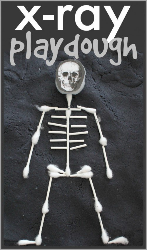 Learn about the skeletal system with X Ray Playdough  500x851 X Ray Playdough