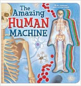 The Amazing Human Machine Books about the Human Body