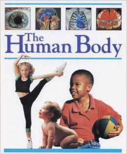 The Human Body Books about the Human Body