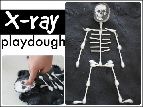 X Ray Playdough1 500x375 X Ray Playdough