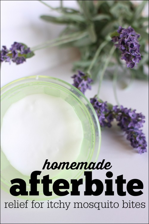 Homemade Afterbite 500x749 Homemade Afterbite (anti itch salve for mosquito bites)