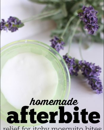 Homemade Afterbite (anti-itch salve for mosquito bites)