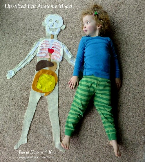 Human Body 12 Human Body Activities for Kids