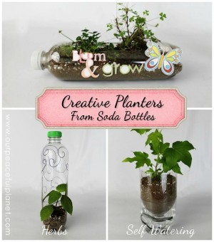 planters.from .soda .bottles.ad  300x340 Show and Share Saturday Link Up