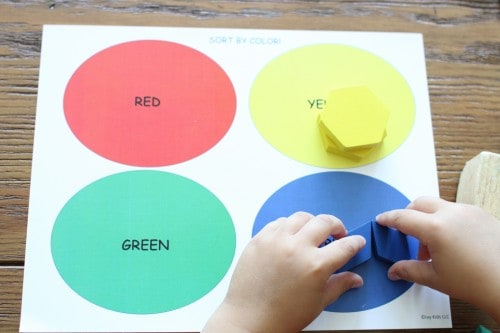 sorting Ivy Kids:  The Perfect Gift for Preschoolers