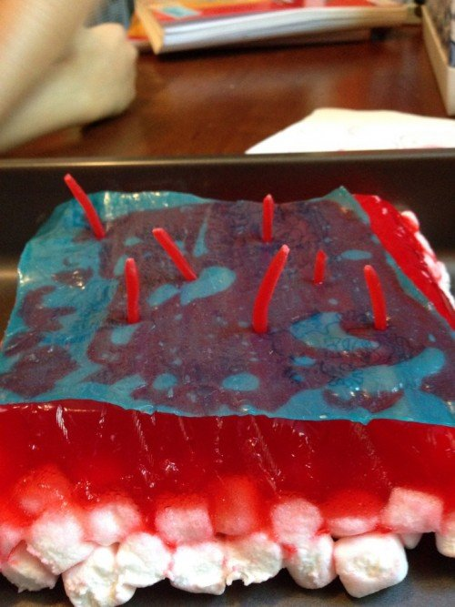 Food Science Experiments Cake