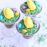 Easter Chicks and Dirt Dessert