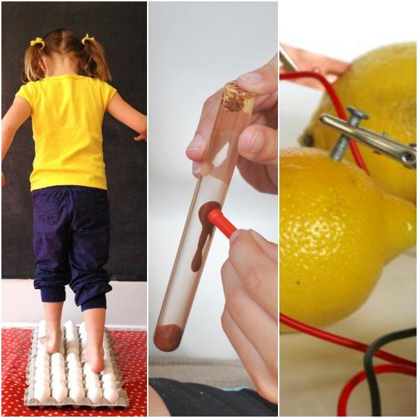 elementary science fair experiments